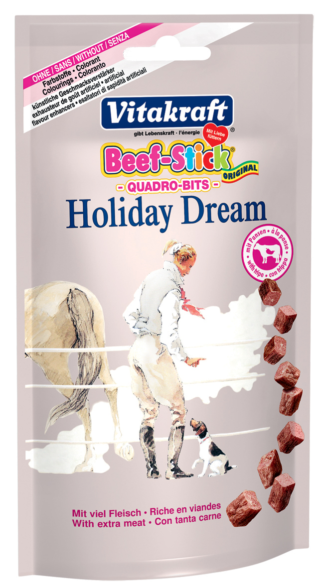 Quadro Bits Holiday Dream žaludky